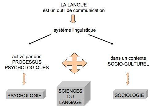 La langue comme outil de communication
