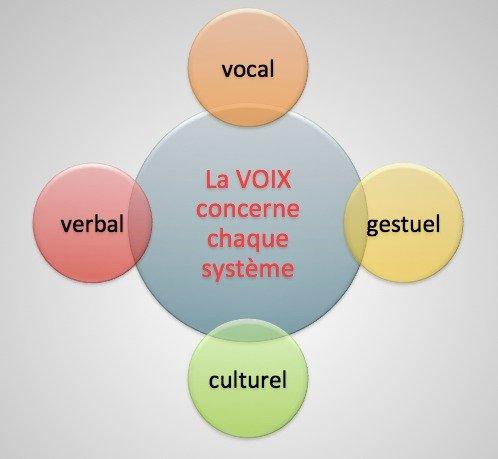 L'omniprésence de la voix