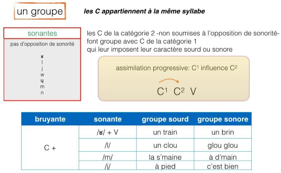Groupe de consonnes: elles appartiennent à la même syllabe