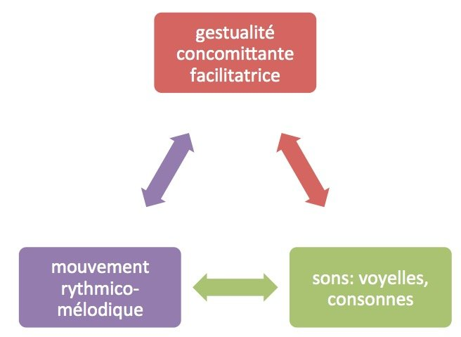 Trois niveaux intercorrélés lors de la correction phonétique